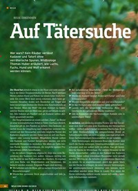 Titelbild der Ausgabe 10/2019 von RISSE ERKENNEN: Auf Tätersuche. Zeitschriften als Abo oder epaper bei United Kiosk online kaufen.