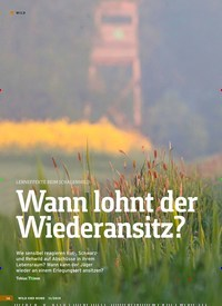 Titelbild der Ausgabe 11/2019 von LERNEFFEKTE BEIM SCHALENWILD: Wann lohnt der Wiederansitz?. Zeitschriften als Abo oder epaper bei United Kiosk online kaufen.