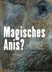 Titelbild der Ausgabe 13/2019 von LOCKMITTEL IM TEST: Magisches Anis?. Zeitschriften als Abo oder epaper bei United Kiosk online kaufen.