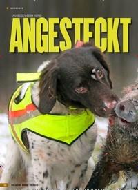 Titelbild der Ausgabe 19/2019 von AUJESZKY BEIM HUND: ANGESTECKT. Zeitschriften als Abo oder epaper bei United Kiosk online kaufen.