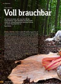 Titelbild der Ausgabe 21/2019 von WUH-BANDE: Voll brauchbar. Zeitschriften als Abo oder epaper bei United Kiosk online kaufen.