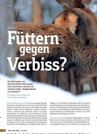 Titelbild der Ausgabe 22/2019 von ROTWILD: Füttern gegen Verbiss?. Zeitschriften als Abo oder epaper bei United Kiosk online kaufen.