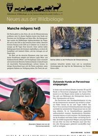 Titelbild der Ausgabe 23/2019 von Neues aus der Wildbiologie. Zeitschriften als Abo oder epaper bei United Kiosk online kaufen.