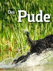 Titelbild der Ausgabe 6/2020 von RASSEPORTRÄT BARBET: Des Pude Is Kern. Zeitschriften als Abo oder epaper bei United Kiosk online kaufen.