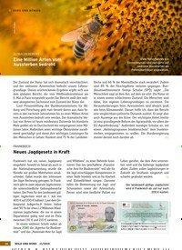 Titelbild der Ausgabe 11/2019 von KURZ UND BÜNDIG. Zeitschriften als Abo oder epaper bei United Kiosk online kaufen.