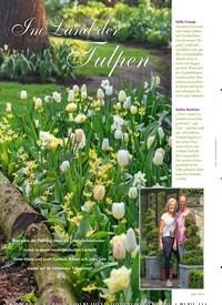 Titelbild der Ausgabe 3/2019 von Im Land der Tulpen. Zeitschriften als Abo oder epaper bei United Kiosk online kaufen.