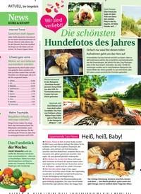 Titelbild der Ausgabe 32/2018 von News KURZ & KNAPP. Zeitschriften als Abo oder epaper bei United Kiosk online kaufen.