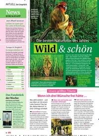 Titelbild der Ausgabe 45/2018 von Die besten Naturfotos des Jahres: Wild & schön. Zeitschriften als Abo oder epaper bei United Kiosk online kaufen.