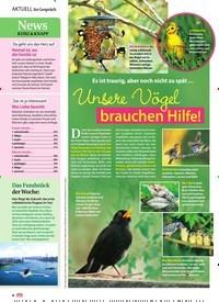 Titelbild der Ausgabe 23/2019 von Es ist traurig, aber noch nicht zu spät … Unsere Vögel brauchen Hilfe!. Zeitschriften als Abo oder epaper bei United Kiosk online kaufen.