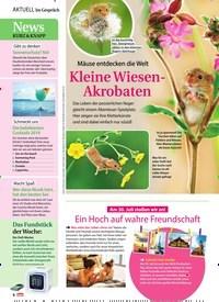 Titelbild der Ausgabe 31/2019 von Mäuse entdecken die Welt: Kleine Wiesen-Akrobaten. Zeitschriften als Abo oder epaper bei United Kiosk online kaufen.