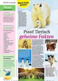 Titelbild der Ausgabe 48/2019 von Pssst! Tierisch geheime Fakten. Zeitschriften als Abo oder epaper bei United Kiosk online kaufen.