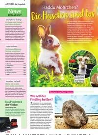 Titelbild der Ausgabe 13/2020 von Namen machen Steine: Wie soll der Findling heißen?. Zeitschriften als Abo oder epaper bei United Kiosk online kaufen.