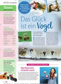 Titelbild der Ausgabe 8/2021 von Im Gespräch. Zeitschriften als Abo oder epaper bei United Kiosk online kaufen.