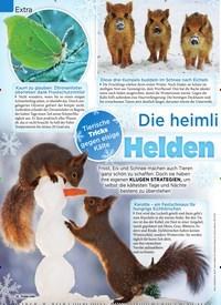 Titelbild der Ausgabe 52/2018 von Extra: Die heimlichen: Helden des Winters. Zeitschriften als Abo oder epaper bei United Kiosk online kaufen.