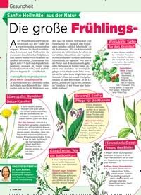 Titelbild der Ausgabe 15/2019 von Gesundheit: Sanfte Heilmittel aus der Natur: Die große Frühlings-Apotheke. Zeitschriften als Abo oder epaper bei United Kiosk online kaufen.
