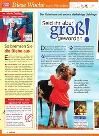 Titelbild der Ausgabe 16/2019 von Der Osterhase und andere vierbeinige Lieblinge : Seid ihr aber groß geworden !. Zeitschriften als Abo oder epaper bei United Kiosk online kaufen.