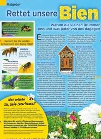 Titelbild der Ausgabe 17/2019 von Ratgeber: Rettet unsere Bienen. Zeitschriften als Abo oder epaper bei United Kiosk online kaufen.