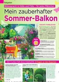 Titelbild der Ausgabe 18/2019 von Ratgeber: Mein zauberhafter Sommer-Balkon. Zeitschriften als Abo oder epaper bei United Kiosk online kaufen.