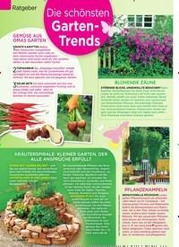 Titelbild der Ausgabe 18/2019 von Ratgeber: Die schönsten Garten-Trends. Zeitschriften als Abo oder epaper bei United Kiosk online kaufen.