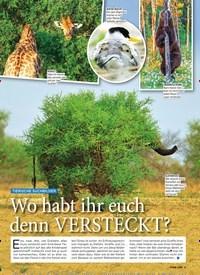 Titelbild der Ausgabe 47/2019 von TIERISCHE SUCHBILDER: Wo habt ihr euch denn VERSTECKT?. Zeitschriften als Abo oder epaper bei United Kiosk online kaufen.