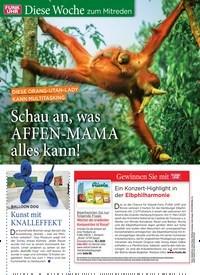 Titelbild der Ausgabe 1/2020 von DIESE ORANG -UTAN-LADY KANN MULTITASKING: Schau an, was AFFEN-MAMA alles kann!. Zeitschriften als Abo oder epaper bei United Kiosk online kaufen.
