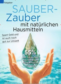 Titelbild der Ausgabe 10/2020 von SAUBER- Zauber mit natürlichen Hausmitteln. Zeitschriften als Abo oder epaper bei United Kiosk online kaufen.