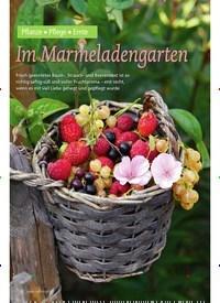 Titelbild der Ausgabe 4/2018 von Pflanze ? Pflege ? Ernte: Im Marmeladengarten. Zeitschriften als Abo oder epaper bei United Kiosk online kaufen.