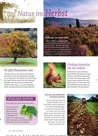 Titelbild der Ausgabe 5/2018 von Natur im Herbst. Zeitschriften als Abo oder epaper bei United Kiosk online kaufen.