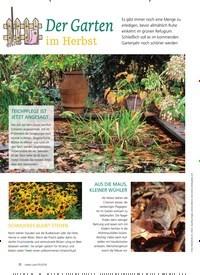 Titelbild der Ausgabe 5/2018 von Der Garten im Herbst. Zeitschriften als Abo oder epaper bei United Kiosk online kaufen.