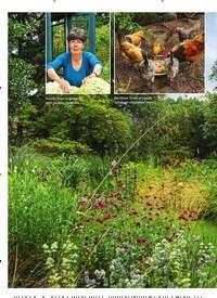 Titelbild der Ausgabe 3/2019 von GARTEN: Garten mit viel Freiheit. Zeitschriften als Abo oder epaper bei United Kiosk online kaufen.