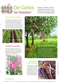 Titelbild der Ausgabe 4/2019 von Der Garten im Sommer. Zeitschriften als Abo oder epaper bei United Kiosk online kaufen.