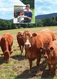 Titelbild der Ausgabe 4/2019 von Glückliches Leben auf dem Bauernhof Etzel. Zeitschriften als Abo oder epaper bei United Kiosk online kaufen.