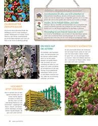 Titelbild der Ausgabe 5/2019 von Der Garten im Herbst. Zeitschriften als Abo oder epaper bei United Kiosk online kaufen.