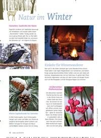Titelbild der Ausgabe 6/2019 von Natur im Winter. Zeitschriften als Abo oder epaper bei United Kiosk online kaufen.