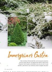 Titelbild der Ausgabe 1/2020 von Immergrüner Garten. Zeitschriften als Abo oder epaper bei United Kiosk online kaufen.