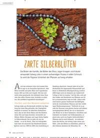 Titelbild der Ausgabe 4/2020 von Zarte Silberblüten. Zeitschriften als Abo oder epaper bei United Kiosk online kaufen.