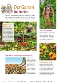 Titelbild der Ausgabe 5/2020 von Der Garten im Herbst. Zeitschriften als Abo oder epaper bei United Kiosk online kaufen.