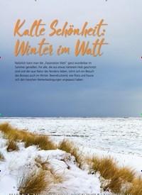 Titelbild der Ausgabe 1/2021 von NATUR: Kalte Schönheit: Winter im Watt. Zeitschriften als Abo oder epaper bei United Kiosk online kaufen.