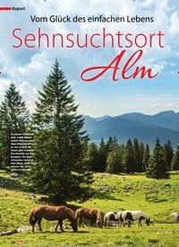 Titelbild der Ausgabe 1/2019 von Report: Vom Glück des einfachen Lebens Sehnsuchtsort Alm. Zeitschriften als Abo oder epaper bei United Kiosk online kaufen.