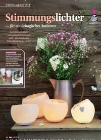 Titelbild der Ausgabe 1/2017 von Stimmungslichter … für ein behagliches Ambiente. Zeitschriften als Abo oder epaper bei United Kiosk online kaufen.