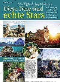 Titelbild der Ausgabe 31/2018 von AKTUELL Tiere: Vier Pfoten & saugute Stimmung: Diese Tiere sind echte Stars. Zeitschriften als Abo oder epaper bei United Kiosk online kaufen.