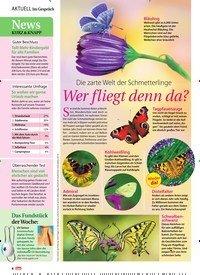 Titelbild der Ausgabe 28/2019 von Wer fliegt denn da?. Zeitschriften als Abo oder epaper bei United Kiosk online kaufen.