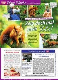 Titelbild der Ausgabe 12/2019 von Diese Woche zum Mitreden: Ganz schön neugierig, das kleine Hörnchen: Zeig doch mal mein Foto!. Zeitschriften als Abo oder epaper bei United Kiosk online kaufen.