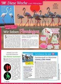 Titelbild der Ausgabe 19/2019 von Diese Woche zum Mitreden: Schönheiten mit langen Beinen: Wir lieben Flamingos. Zeitschriften als Abo oder epaper bei United Kiosk online kaufen.