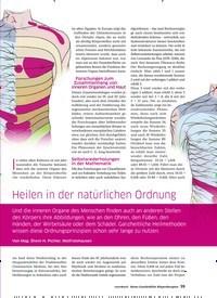 Titelbild der Ausgabe 41/2020 von Heilen in der natürlichen Ordnung. Zeitschriften als Abo oder epaper bei United Kiosk online kaufen.