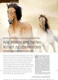 Titelbild der Ausgabe 43/2020 von Seelenwesen mit einzigartigen Fähigkeiten: Wie Pferde uns helfen, Krisen zu überwinden. Zeitschriften als Abo oder epaper bei United Kiosk online kaufen.