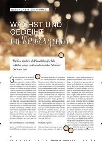 Titelbild der Ausgabe 2/2019 von SCHIMMEL: WÄCHST UND GEDEIHT im Verborgenen. Zeitschriften als Abo oder epaper bei United Kiosk online kaufen.