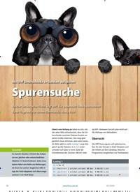 Titelbild der Ausgabe 2/2020 von Diff-Varianten: Spurensuche. Zeitschriften als Abo oder epaper bei United Kiosk online kaufen.