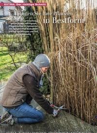 Titelbild der Ausgabe 2/2019 von Bringen Sie Ihre Pflanzen in Bestform. Zeitschriften als Abo oder epaper bei United Kiosk online kaufen.