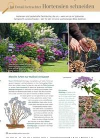 Titelbild der Ausgabe 2/2019 von Im Detail betrachtet Hortensien schneiden. Zeitschriften als Abo oder epaper bei United Kiosk online kaufen.